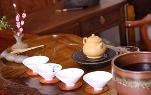 收藏馆新店开张,欢迎茶油们