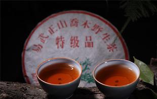 万博体育app下载茶的未来,看老茶